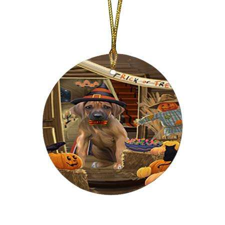 Enter at Own Risk Trick or Treat Halloween Rhodesian Ridgeback Dog Round Flat Christmas Ornament RFPOR53234