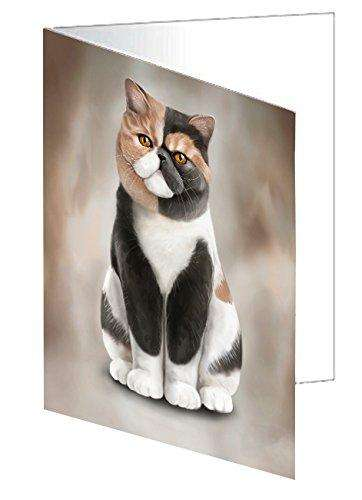 Exotic Shorthair Cat Greeting Card D024