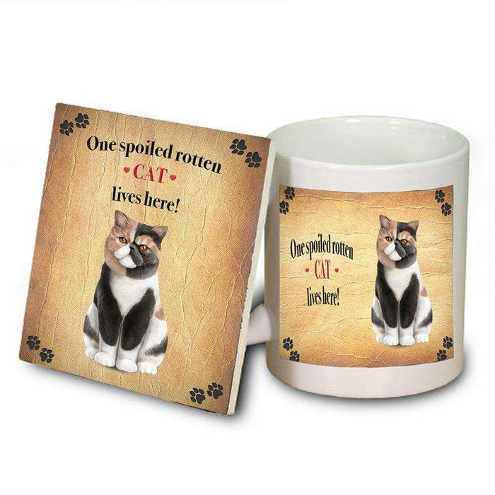 Exotic Shorthair Spoiled Rotten Cat Coaster and Mug Combo Gift Set