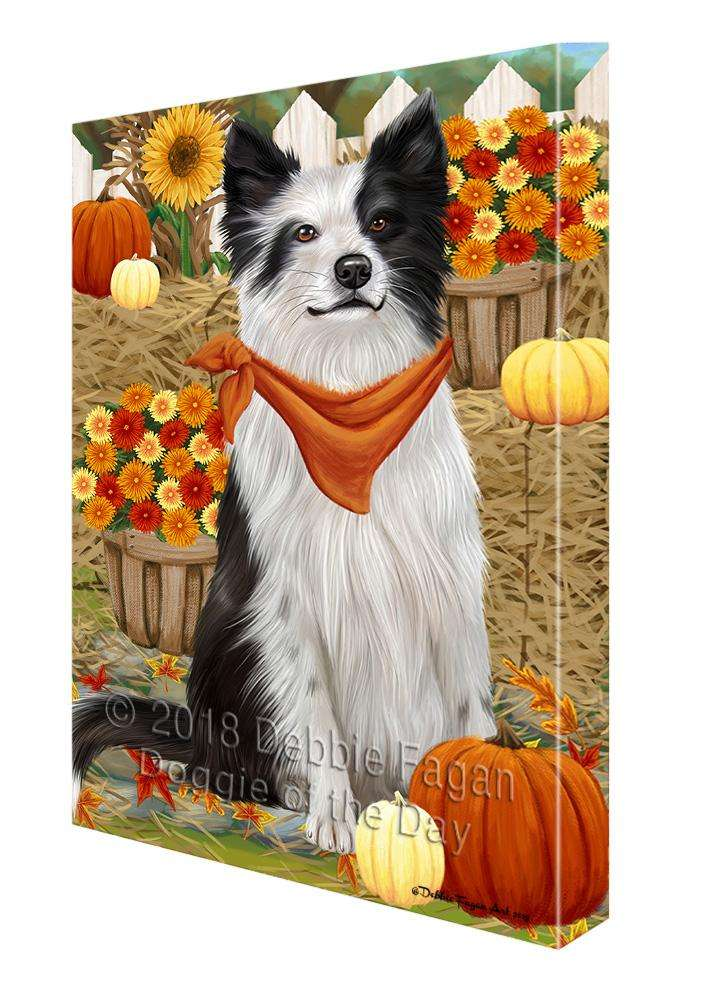 fall autumn greeting border collie dog with pumpkins