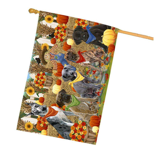 Fall Festive Gathering Great Danes Dog with Pumpkins House Flag FLG50663