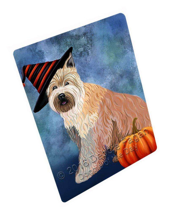 88916635d5d Happy Halloween Berger Picard Dog Wearing Witch Hat with Pumpkin Tempe —  Doggie of the Day