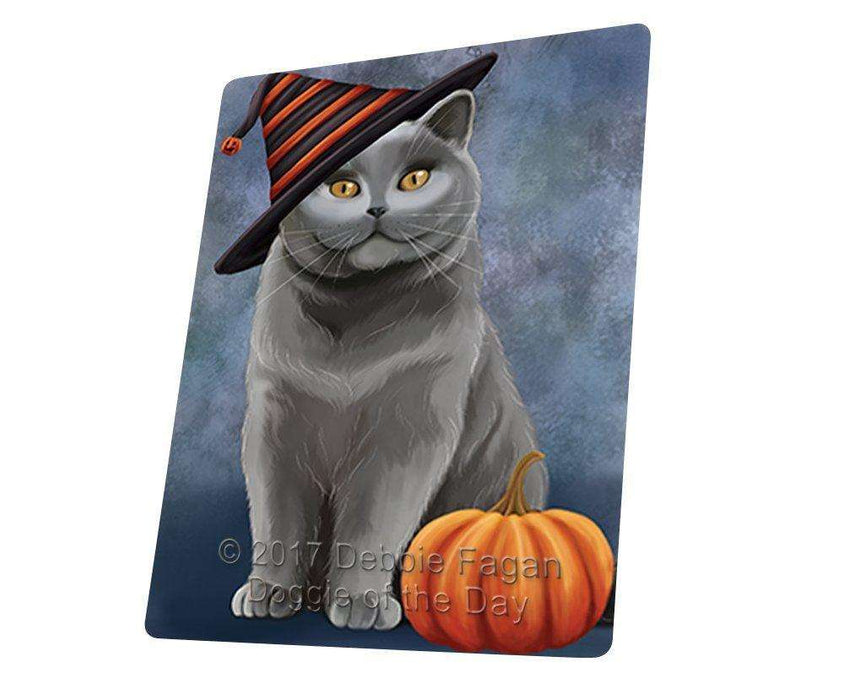 Happy Halloween British Shorthair Cat Wearing Witch Hat with Pumpkin Art Portrait Print Woven Throw Sherpa Plush Fleece Blanket