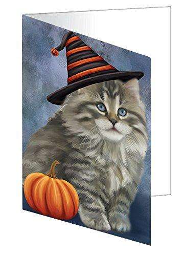 Happy Halloween Persian Cat Wearing Witch Hat with Pumpkin Greeting Card D498