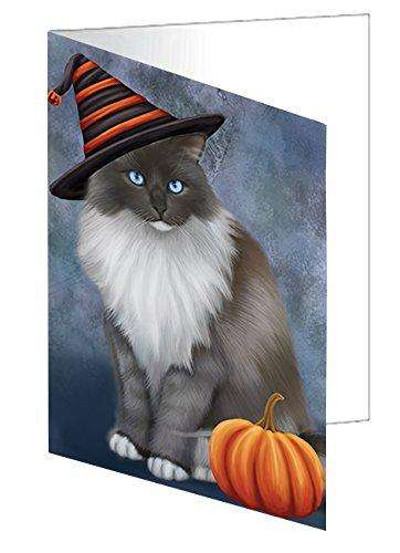 Happy Halloween Ragdoll Cat Wearing Witch Hat with Pumpkin Greeting Card D055