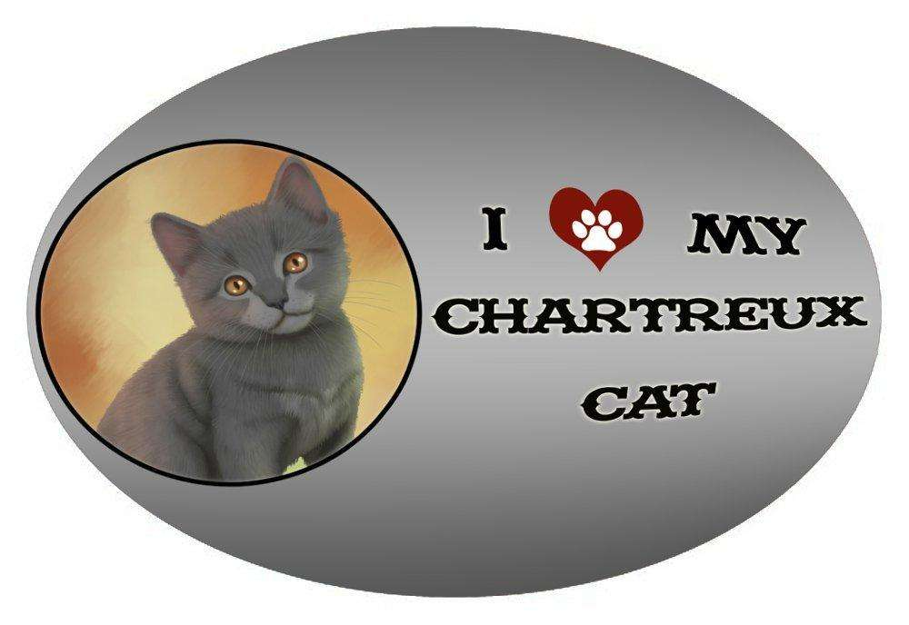 I Love My Chartreux Kitten Cat Oval Envelope Seals
