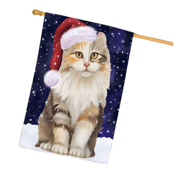 Let it Snow Christmas Holiday American Curl Cat Wearing Santa Hat House Flag HF258