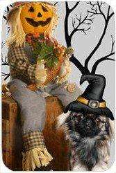 Pekingese Tempered Cutting Board Halloween