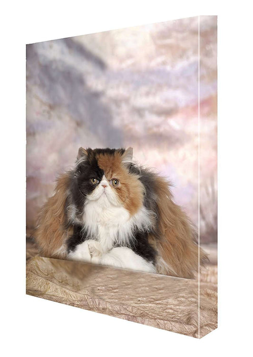 Persian Cat Canvas 18 x 24