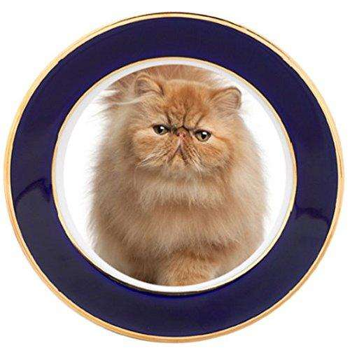 Persian Kitten Porcelain Plate