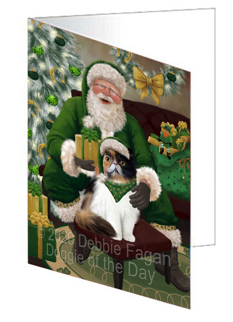 Christmas Irish Santa with Gift and Persian Cat Note Card NCD75908