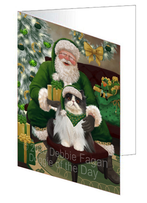 Christmas Irish Santa with Gift and Persian Cat Note Card NCD75911