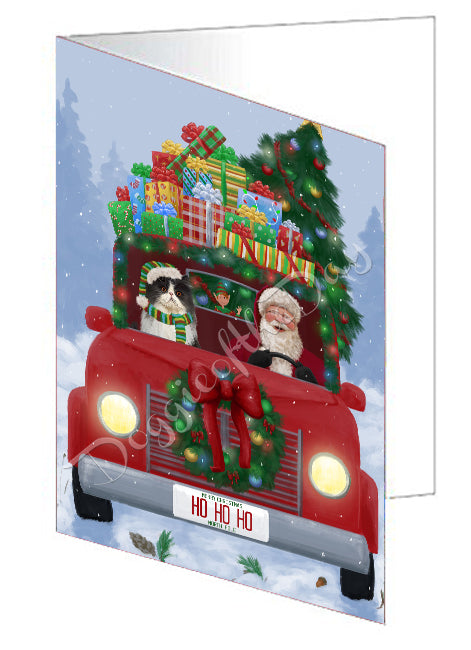 Christmas Honk Honk Red Truck Here Comes with Santa and Persian Cat Note Card NCD75620
