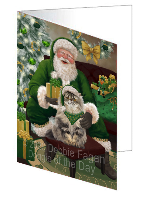 Christmas Irish Santa with Gift and Persian Cat Note Card NCD75914