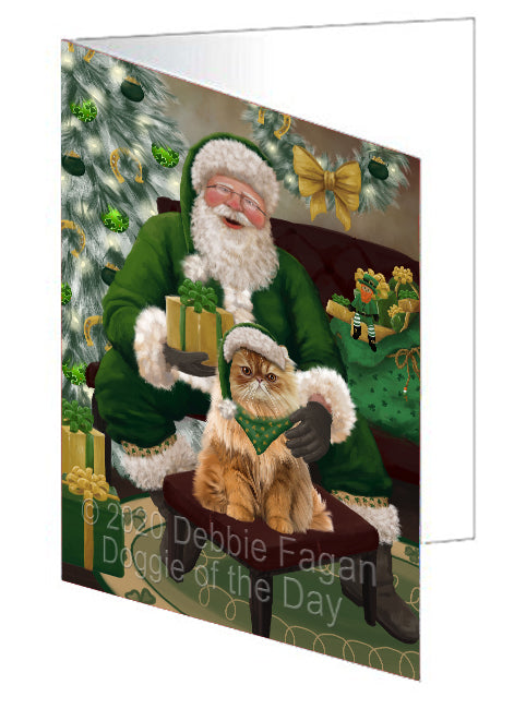 Christmas Irish Santa with Gift and Persian Cat Note Card NCD75917