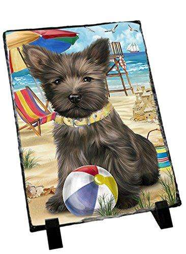 Pet Friendly Beach Cairn Terrier Dog Photo Slate SLT48629