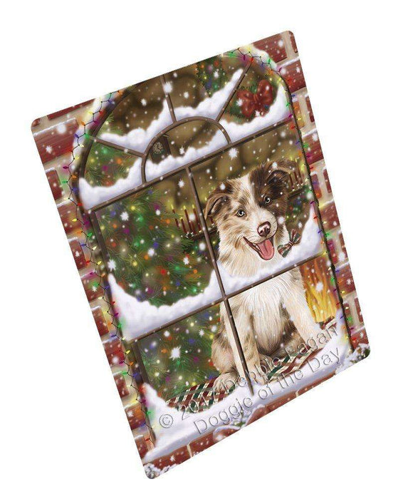 Please Come Home For Christmas Border Collies Dog Sitting In Window Art Portrait Print Woven Throw Sherpa Plush Fleece Blanket