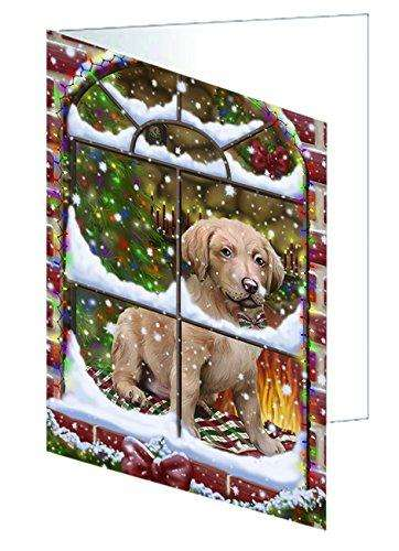 Please Come Home For Christmas Chesapeake Bay Retriever Dog Sitting In Window Greeting Card
