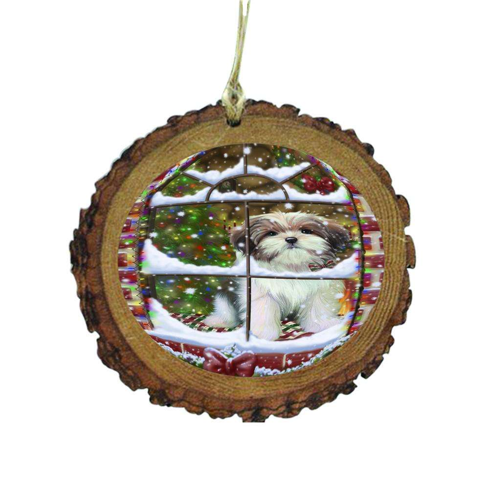 Please Come Home For Christmas Malti Tzu Dog Sitting In Window Wooden Christmas Ornament WOR49188
