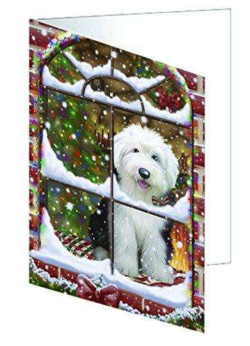 Please Come Home For Christmas Old English Sheepdog Dog Sitting In Window Greeting Card