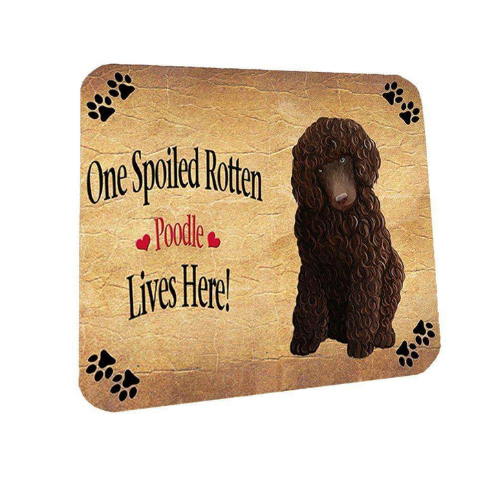 Poodle Brown Spoiled Rotten Dog Coasters Set of 4