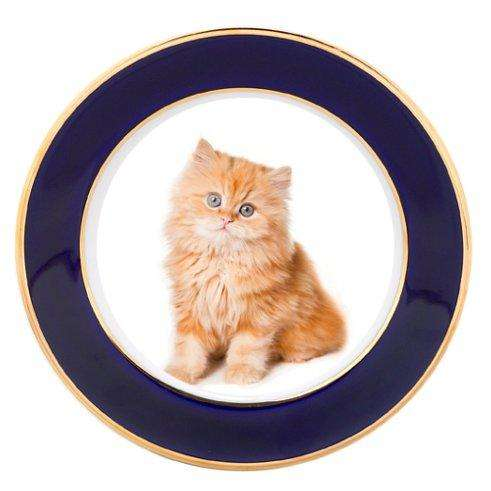 Red Persian Kitten Porcelain Plate