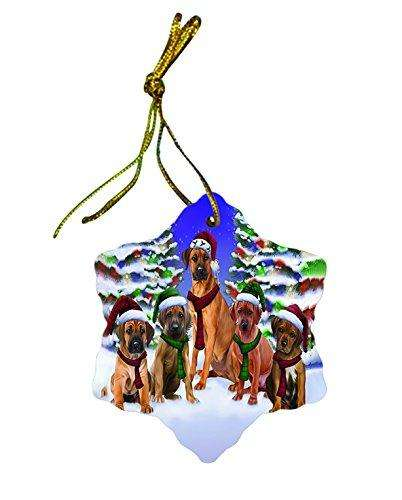 Rhodesian Ridgeback Dog Christmas Snowflake Ceramic Ornament