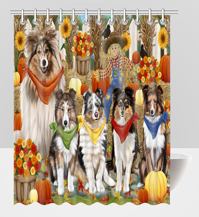 Fall Festive Harvest Time Gathering Shetland Sheepdogs Shower Curtain
