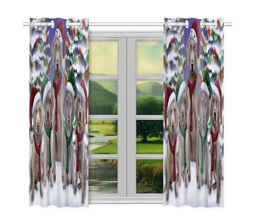 Weimaraner Dogs Christmas Family Portrait in Holiday Scenic Background Window Curtain
