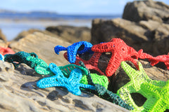 Sea Stars by Jane Meredith Whitten