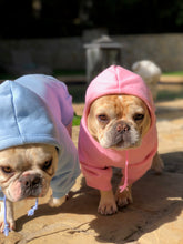 Pink Dog Hooded Sweatshirt