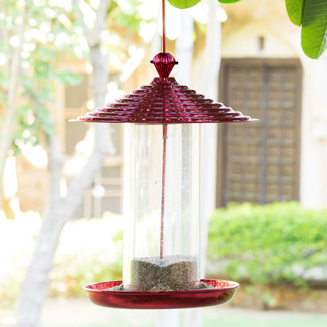 Bistro Bird Feed - Red