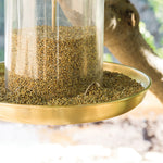 Bistro Bird Feed - Yellow