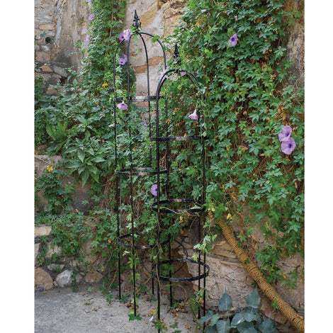 Standing Rose Pillars for Garden Online