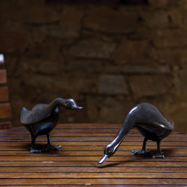 Ducks (Set of 2)