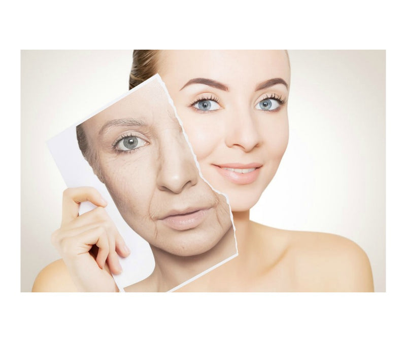 Turn Back The Clock Anti Aging Cream