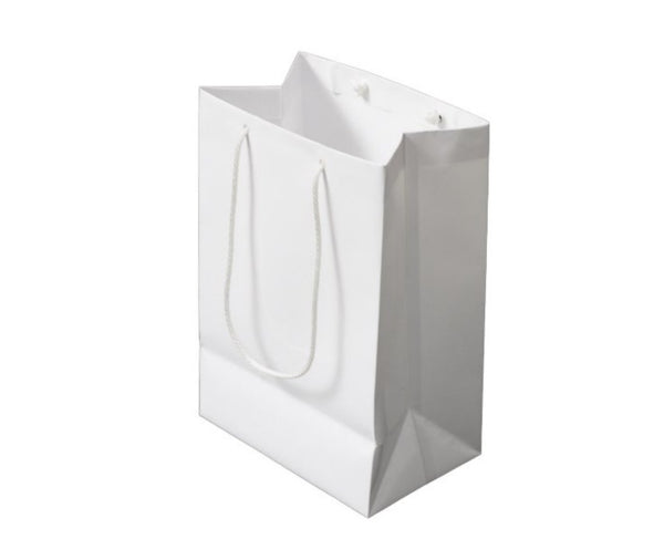 Medium Custom Paper Shopping Bag with Logo