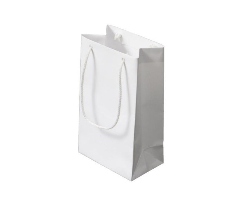 Small Custom Paper Shopping Bag with Logo