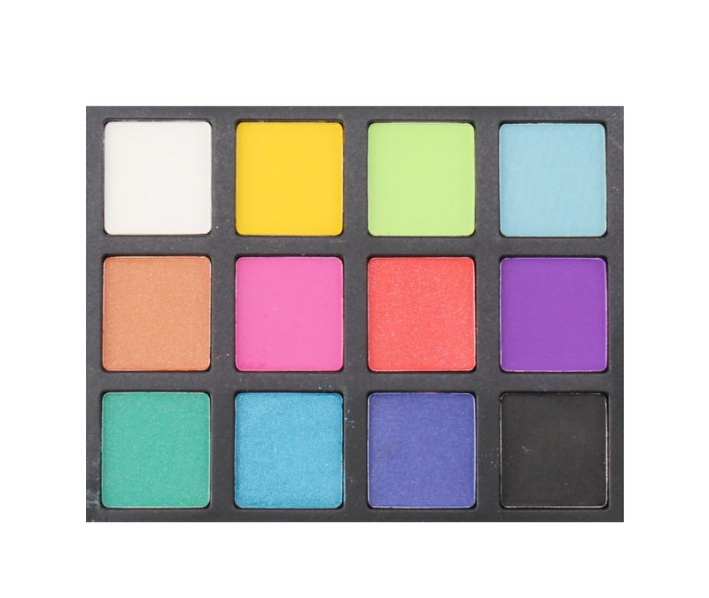 Shock Therapy - 12 Shade Palette