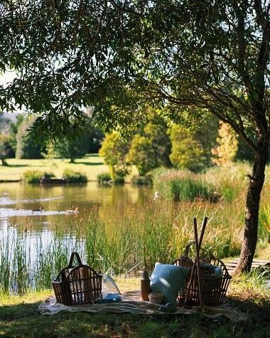 picnic by pond
