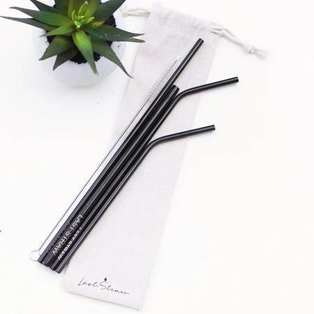 Last Straw Stainless Steel Straw Set