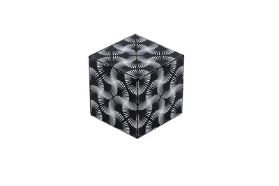 Shashibo Magic Shape Shifting Cube