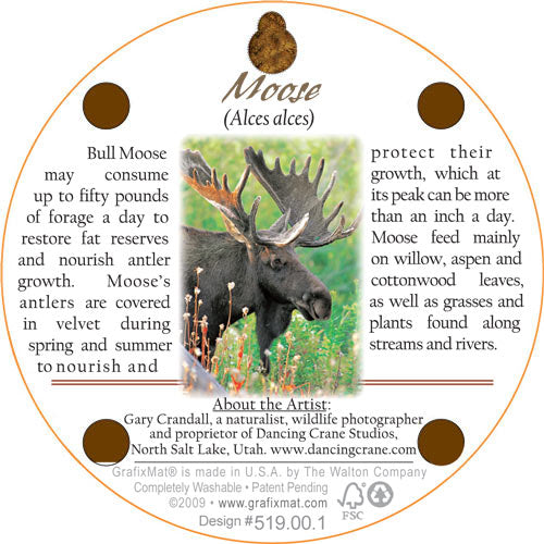 Coaster - Moose Monarch - Cork