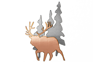 Elk in Pines