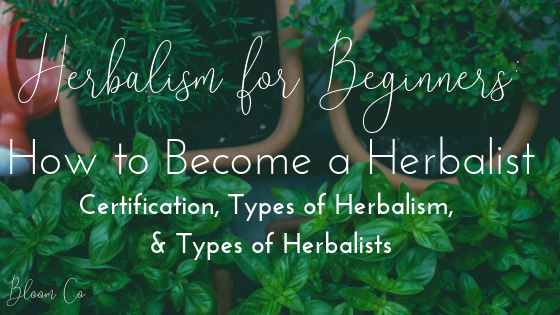 Herbalism for Beginners: How to Become a Herbalist
