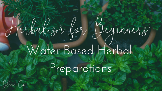 Herbalism for Beginners: Water-Based Preparations