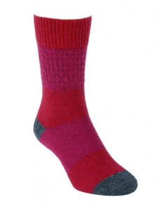 Gecko Possum Merino Socks in Raspberry
