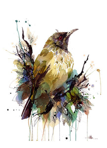 Rachel Walker - Bellbird Bouquet Limited Edition Print