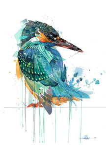 Rachel Walker - Salty Kingfisher Limited Edition Print