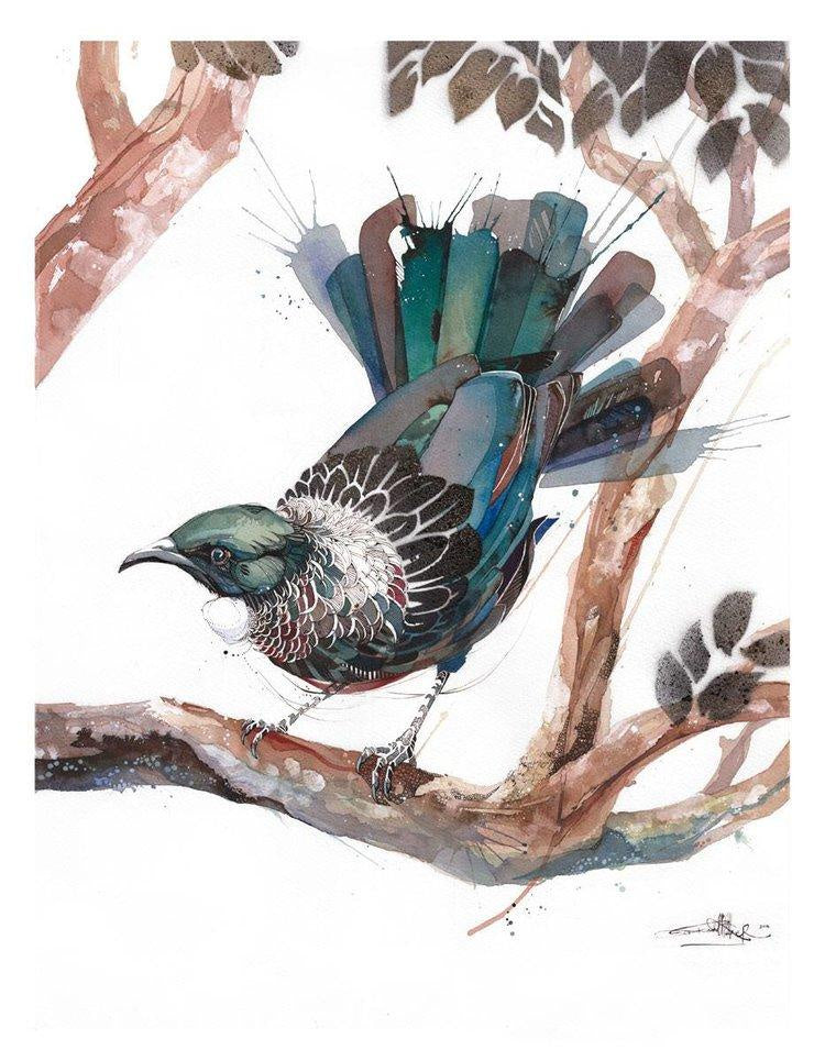 Rachel Walker - Tui Limited Edition Print